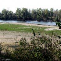 река Десна обмелела :: Александр Скамо