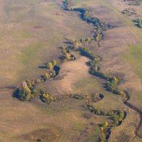 Золотая осень на планете Земля :: Zifa Dimitrieva