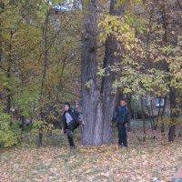 Однако, Осень во дворе! :: Tatyana Kuchina