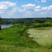 Пейзаж с деревенским прудом :: Grey Bishop