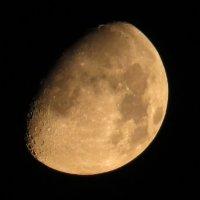Луна :: Валерий Судачок