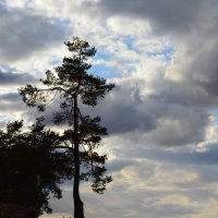Природа :: Ксения Валерьевна