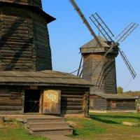 Музей деревяного зодчества в Суздале. :: Александр Теленков