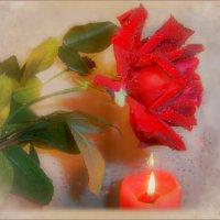 И только аромат цветущих роз..... :: Людмила Богданова (Скачко)