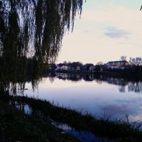Городское озеро Советска :: Карина Соколец