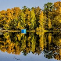 Autumn on the pond :: Dmitry Ozersky