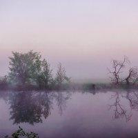 Загадочный рассвет! :: Борис Кононов