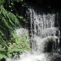 водопад :: tgtyjdrf