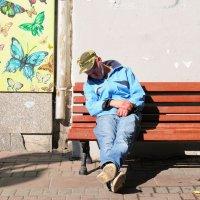 ... и бабочки летали :: Александр Степовой