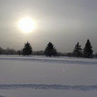Мороз и солнце :: Natusya 89