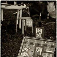 Кажется, у всех таких историй - целый чемодан :: Ирина Данилова