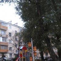 Осенний дворик. :: Светлана Калмыкова