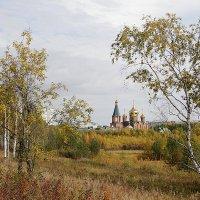 Осень. :: Наталья Каравай