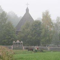 Белый туман :: AstaA