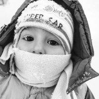 Маленький принц :: Надежда Овчинникова