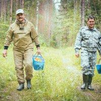 Хорошо в лесу,,, :: Елена Грибоедова