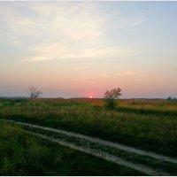 Розовый закат. :: Валерия Комова