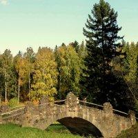 Через мосток... :: Владимир Гилясев