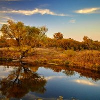 Маленькое озеро на закате :: Андрей Попов