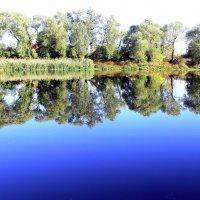 Осенние фотозарисовки. :: Борис Митрохин