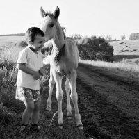 Ты же ребенок... :: Евгений Юрков