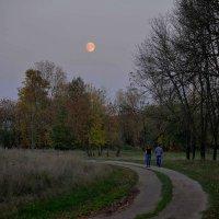 Восход луны :: Владимир Безгрешнов