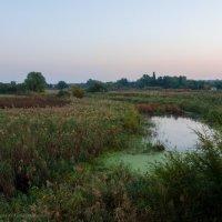 Осеннее утро в селе... :: Ксения Довгопол