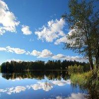 Озеро Малое Кирилловское :: Laryan1