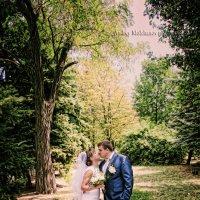 Свадьба Тани и Антона :: Андрей Молчанов