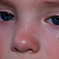 Тимошкины слезы :: Александр Прокудин