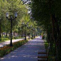 На аллее фонари :: Иван Иванов