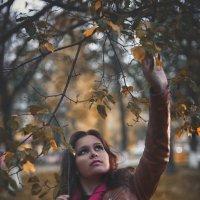 Осень осень.... :: Игорь Чистяков