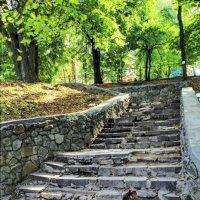 старая лестница :: юрий иванов