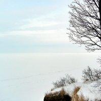 Куйбышевское водохранилище :: Денис Кораблёв