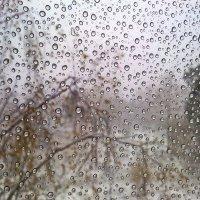 Льдинки на стекле. :: Любовь Чунарёва