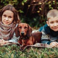 Дети и Бадди :: Ольга Никонорова