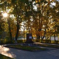 Золотая осень. Утро. :: Дмитрий Печенкин