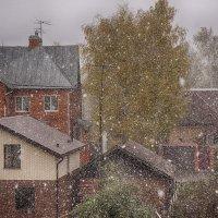 Первый снег... :: марк