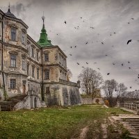 Подгорецкий замок. :: ALLA Melnik