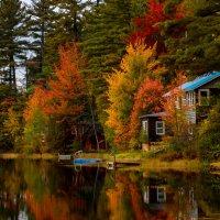 Осень у тихого пруда. :: Slava Sh