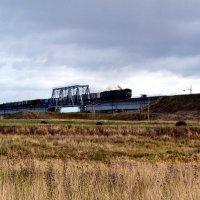 Товарный поезд на мосту :: Николай Туркин