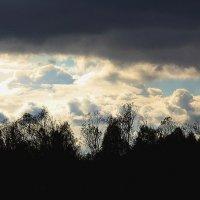облака :: Ольга (Кошкотень) Медведева