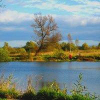 Осенний этюд на пруду. :: Александр Атаулин