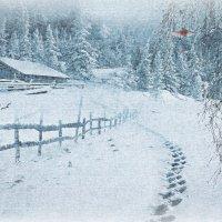 зима на хуторе :: dex66