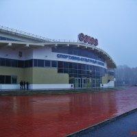 Дождливая погода :: Лидия (naum.lidiya)