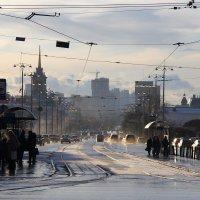 В ожидании зимы :: Анастасия Петрова
