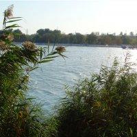 Природа и город...6 :: Тамара (st.tamara)