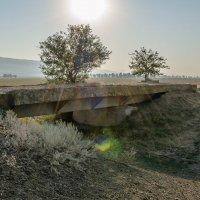 "Разрушенный мост ""Туапсинки""...ст. Убеженская... :: Юлия Бабитко"
