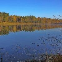 Осень на заливе :: Анатолий Иргл