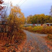Осенние...гаражи :) :: Милла Корн